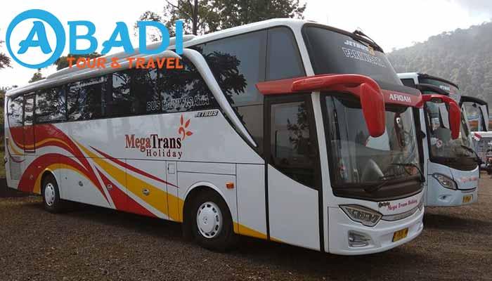 760 Gambar Kursi Bus Pariwisata 33 Seats Terbaik