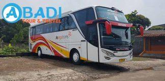 Daftar Harga Sewa Bus Pariwisata di Jombang Terbaru