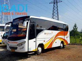 Daftar Harga Sewa Bus Pariwisata di Tangerang Terbaru