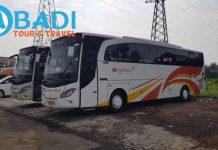 Daftar Harga Sewa Bus Pariwisata di Pacitan Terbaru
