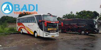 Daftar Harga Sewa Bus Pariwisata di Sampang Terbaru